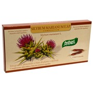 Silybum marianum E.S.P. 60 ml